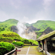 Yangmingshan National Park & Hot Spring Half Day Tour (Group)